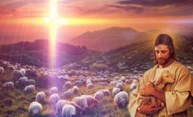 nie jest wolą Ojca waszego, który jest w niebie, żeby zginęło