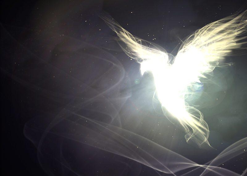 Ujrzałem Ducha, który spoczął na Nim