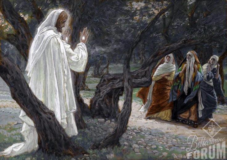 A Jezus rzekł do nich: «Nie bójcie się!